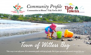 2015 Witless Bay Community Profile Cover Page