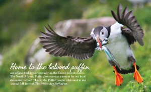 Witless Bay - Home of the North Atlantic Puffin